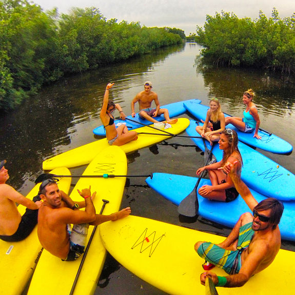 Stand Up Paddleboard tour Eco mangrove adventure in clearwater florida